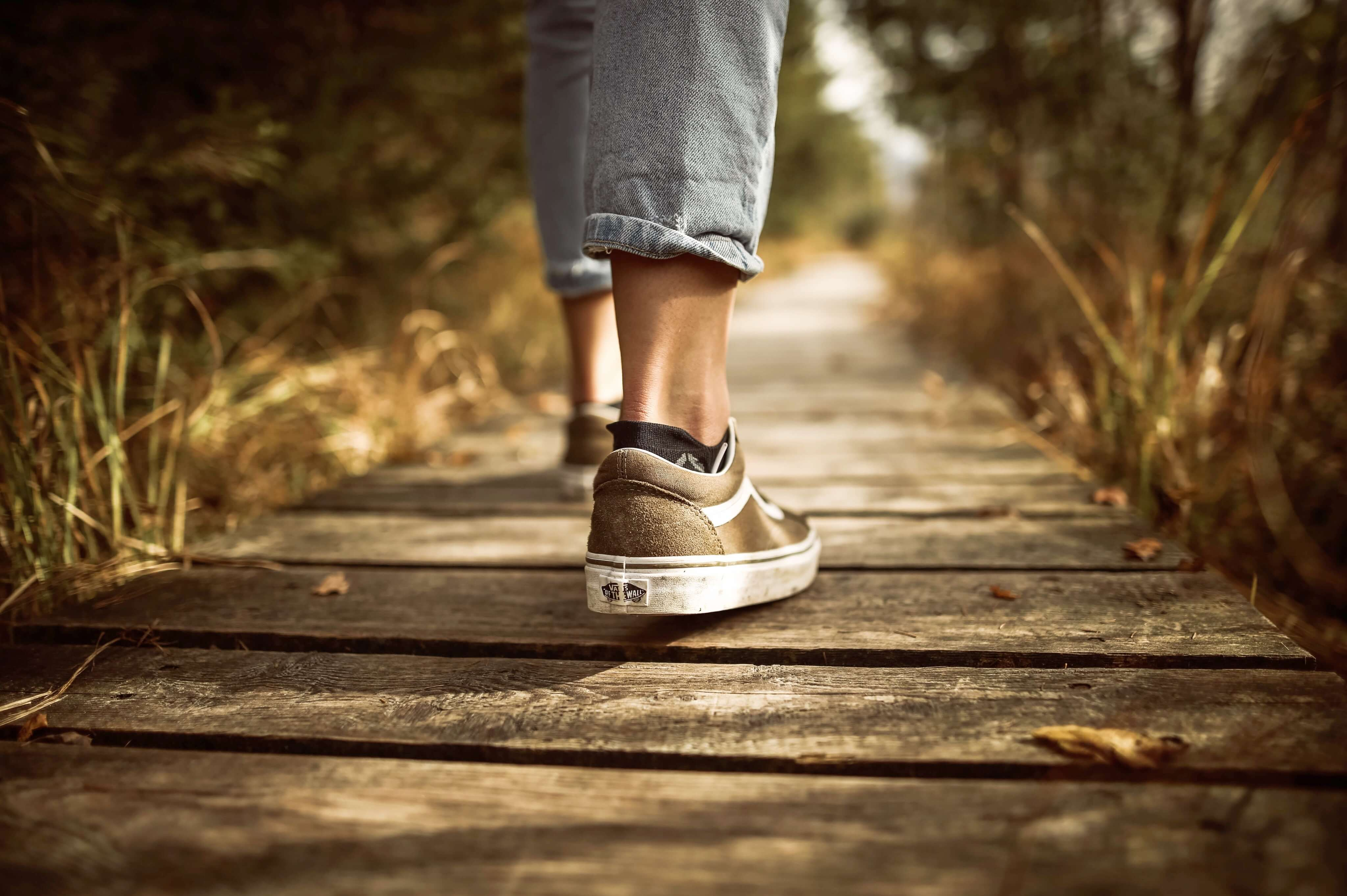 walking on a wooden pathway