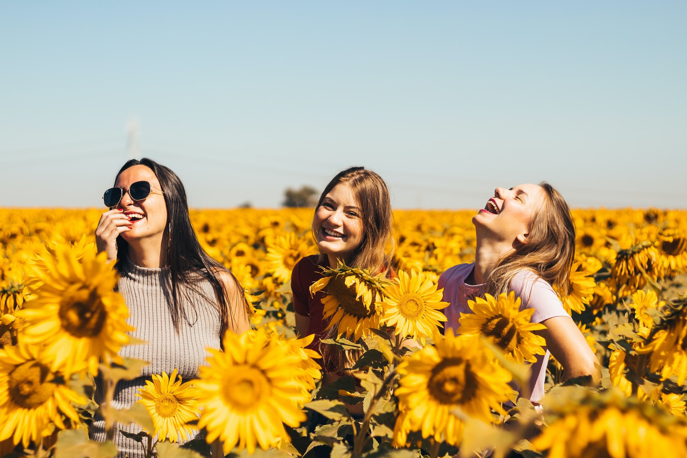 three woman in the middle of sunflower field