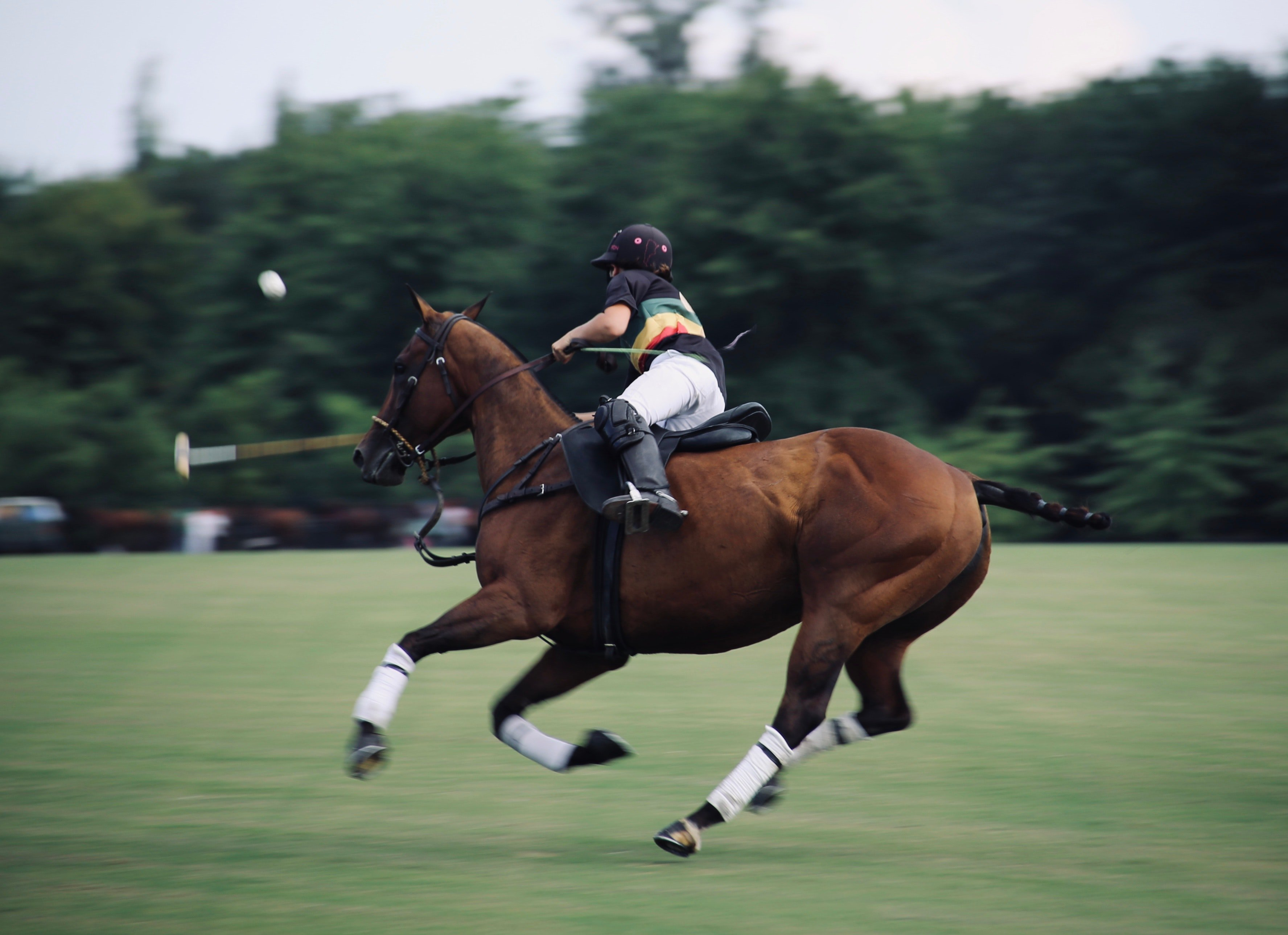 riding horse while playing golf