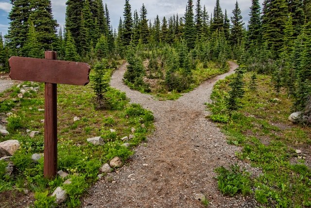 two paths leading to knowhere