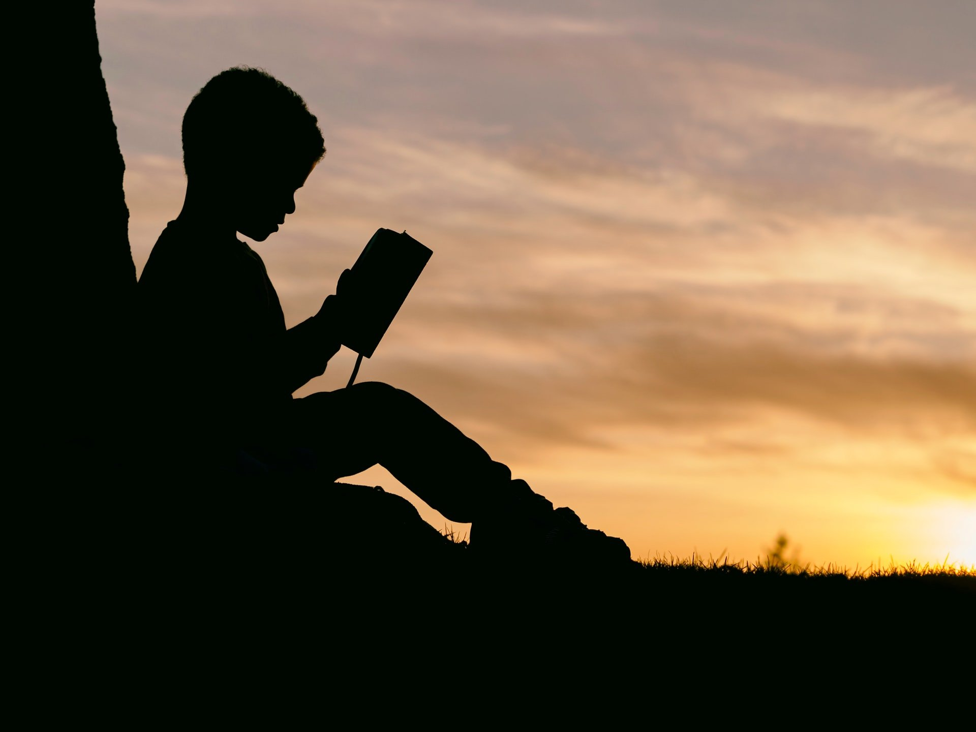 silhouette of child reading under a tree