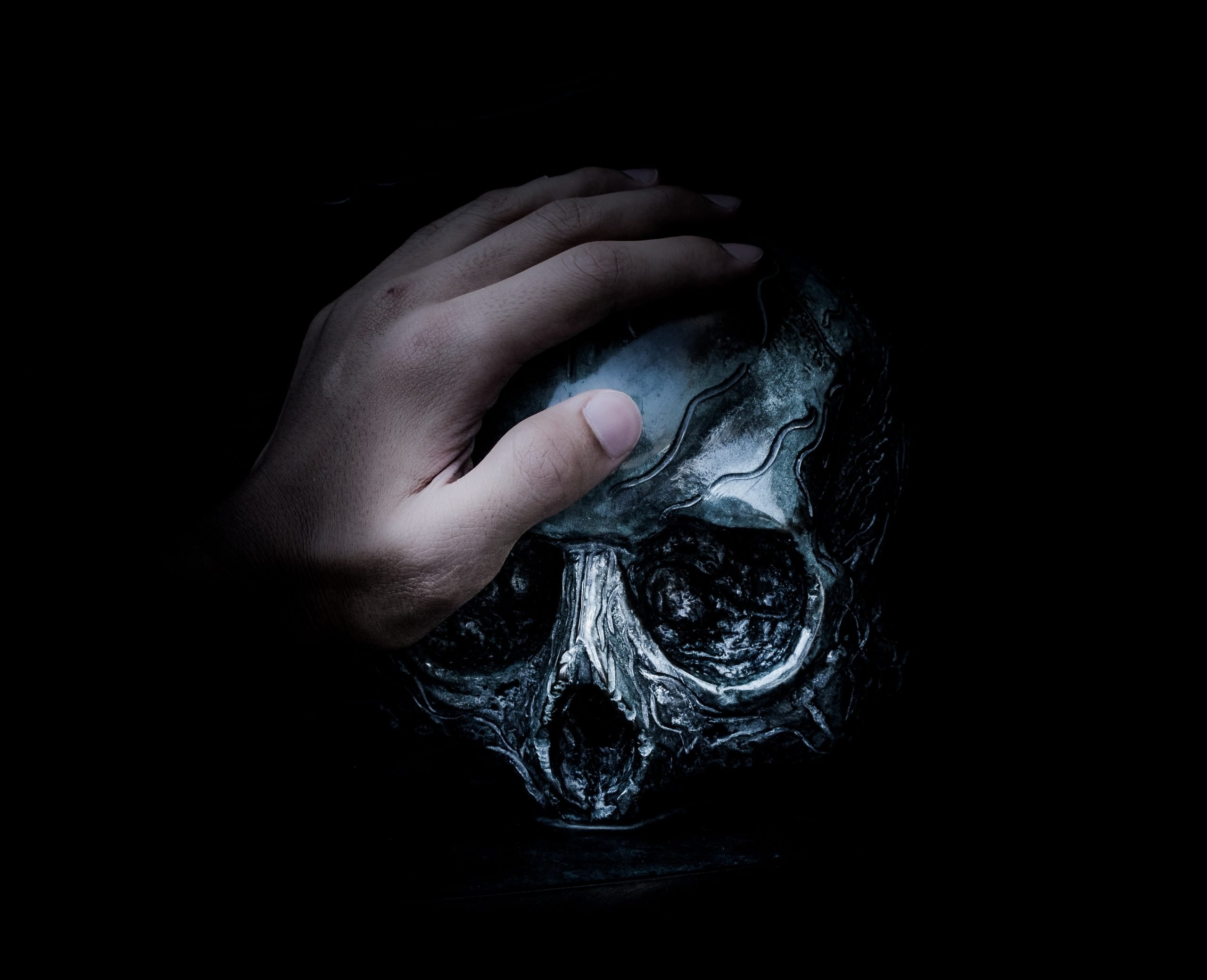 hand holding a skull