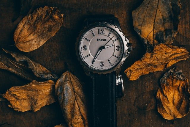 watch with dry leaves around it